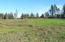 000 SW Norwood Dr, Waldport, OR 97394 - North line looking south