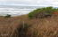 TL 2300 Highway 101 S, Yachats, OR 97498 - Ocean front lot