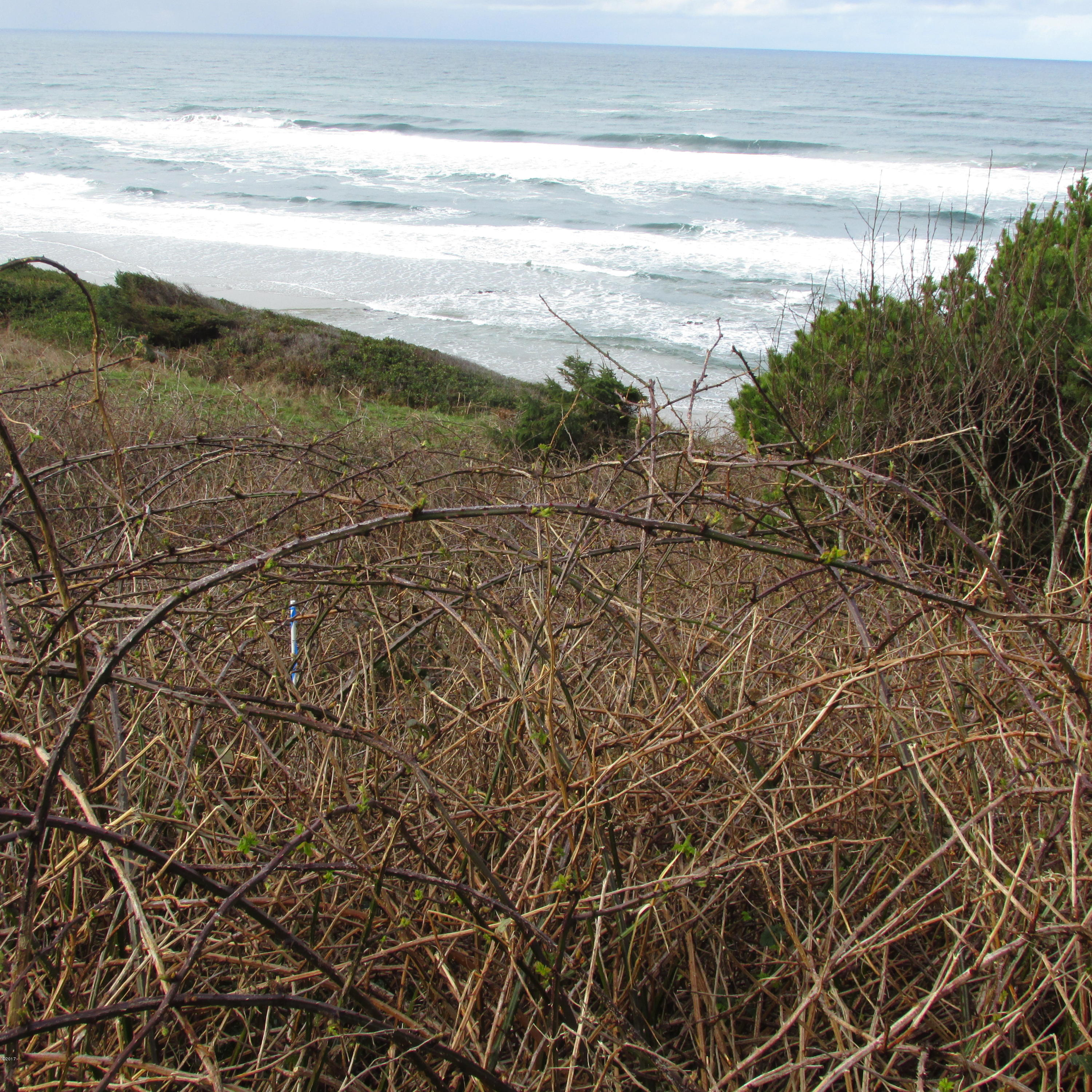 TL 2300 Highway 101 S, Yachats, OR 97498 - High bank view