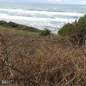 TL 2300 HIGHWAY 101, Yachats, OR 97498