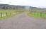 16835 Siletz Hwy, Siletz, OR 97380-9716 - Driveway
