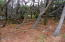 3802 NW Hidden Lake Dr, Waldport, OR 97394 - Lot