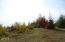2830 NE Big Creek Rd, Newport, OR 97365 - DSC00128