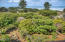 5 Ridge Crest Ln, Gleneden Beach, OR 97388 - 23-IMG_1509_10_11-Edit-6 (2)