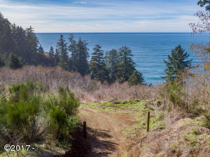 TL 214 South Beach Road, Neskowin, OR 97149 - Lot from Street
