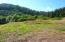 T/L 304 South Beach Road, Neskowin, OR 97149 - Lot 5A (3)