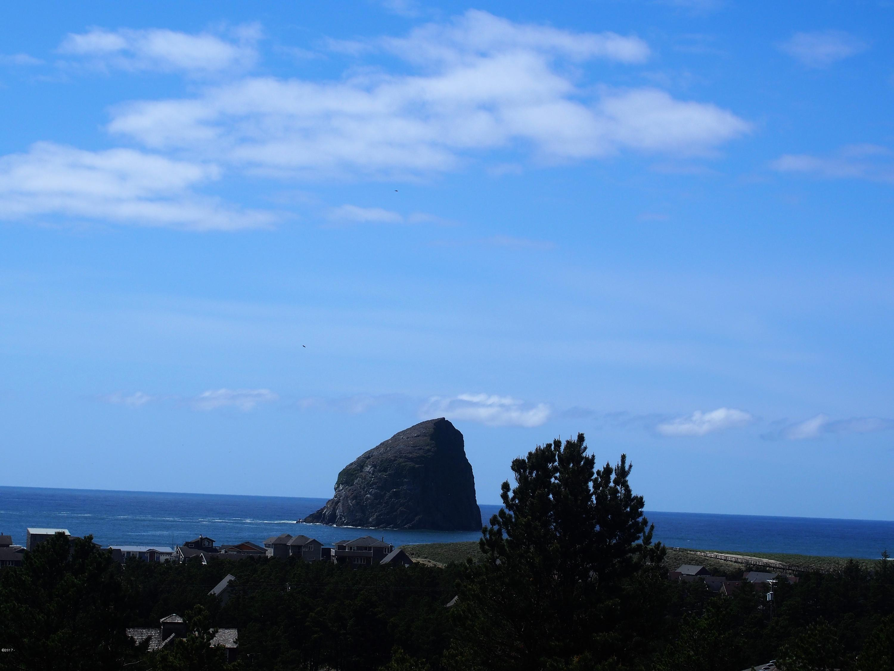 TL 8700 Nestucca Ridge Rd, Pacific City, OR 97135 - view