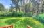 945 SW Pine Ave., Depoe Bay, OR 97341 - Backyard