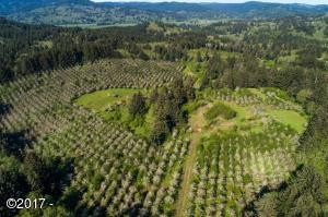 Aerial View of the Holly Farm