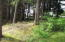 486 Lookout Dr, Gleneden Beach, OR 97388 - Peaceful Setting