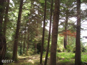 486 Lookout Dr, Gleneden Beach, OR 97388 - OceanView though Forest