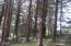 486 Lookout Dr, Gleneden Beach, OR 97388 - Gently Sloping Lot