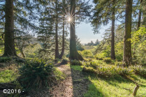 3575 Ridge Rd, Otis, OR 97368 - Beautiful forested lot