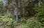 3050 SE Dune Ave, Lincoln City, OR 97367 - Private back yard