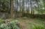 3050 SE Dune Ave, Lincoln City, OR 97367 - Backyard