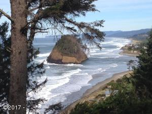 T/L 1201 South Beach Road, Neskowin, OR 97149