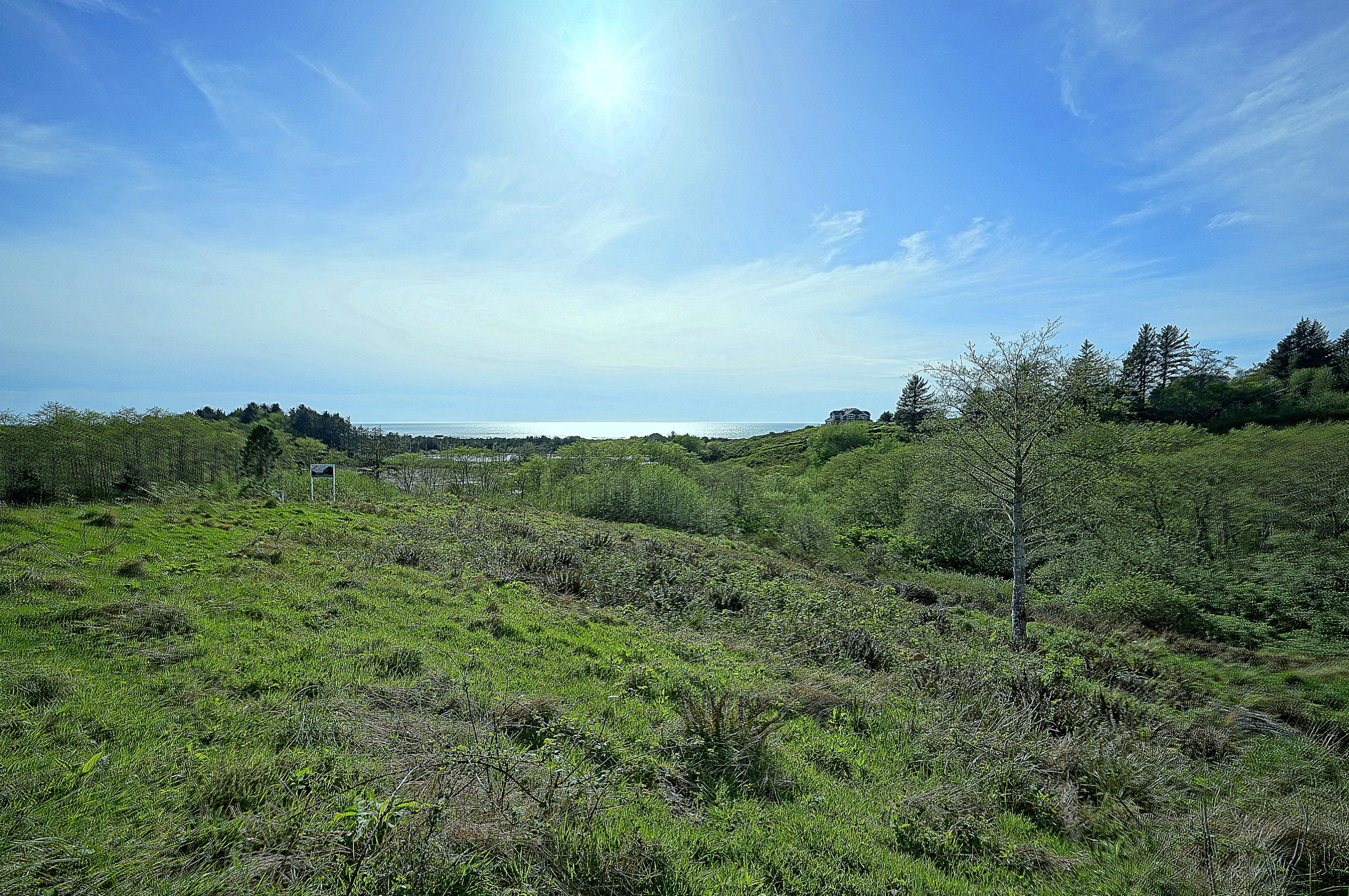 LOT 56 Pelican Point Dr, Neskowin, OR 97149 - Pelican Point T/L 5600