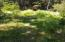 LOT 4 NW Lotus Lake Dr., Waldport, OR 97394 - Trail nearby
