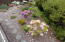 1906 NW Oceanview Dr, Waldport, OR 97394 - Landscaping