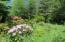 LOT 15 Hamer Rd, Siletz, OR 97380 - Beautiful property