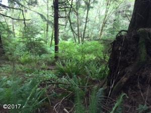 5300 Hill Top Ln, Neskowin, OR 97149 - wooded lot
