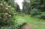 320 SE Evergreen Dr, Waldport, OR 97394 - Yard