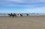6390 SW Arbor Dr, Newport, OR 97365 - horses on beach