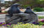 6225 N Coast Hwy Lot 84, Newport, OR 97365 - seal statues