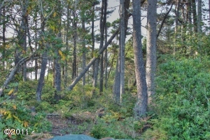 6000BLK SW Neal Ave., Waldport, OR 97394 - Treed Lot