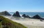 10298 NW US-101, Seal Rock, OR 97376 - Looking south toward Elephant Rock