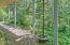 17 Big Tree Rd., Gleneden Beach, OR 97388 - Back Walkway