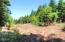 LOT 2800 Waldport Heights Dr, Waldport, OR 97394 - Building Site.