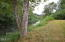17394 E Alsea Hwy, Tidewater, OR 97390 - The river!