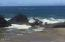 TL#6000 NW Hwy 101, Seal Rock, OR 97376 - Seal Rock for your viewing pleasure!!
