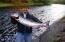 17394 E Alsea Hwy, Tidewater, OR 97390 - The fishin Hole