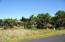 3410 NW Hidden Lake Dr, Waldport, OR 97394 - JED_7476