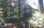 253 N Deer Hill Dr, Waldport, OR 97394 - Path Behind Garden Shed