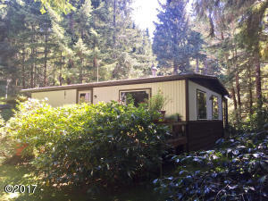 253 N Deer Hill Dr, Waldport, OR 97394 - Back of House and Yard