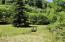 10468 Yachats River, Yachats, OR 97498 - Meadow w/ Redwood Trees!