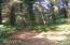1083 NE Newport Heights Drive, Newport, OR 97365-9588 - Wooded walking trail