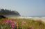 2900 Nescove, Neskowin, OR 97149 - Beach