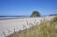 TL 01300 Nescove Dr, Neskowin, OR 97149 - Local Beach Access