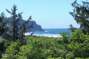402 Scherzinger Road, Neskowin, OR 97149 - south view