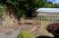 7211 Yaquina Bay Rd, Newport, OR 97365 - Fish Pond