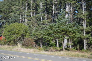 TL 14900 Sandlake Road, Pacific City, OR 97135 - Lot from Street