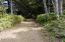 1523 SW Dune Ave, Lincoln City, OR 97367 - Driveway from Dune