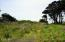 T/L 900 SW Marine View Street, South Beach, OR 97366 - Building Lot