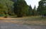 17394 E Alsea Hwy, Tidewater, OR 97390 - Front yard.