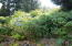 2310 NE 36th Dr, Lincoln City, OR 97367 - Plants & rock wall