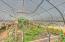 1266 N Yachats River Road, Yachats, OR 97498 - 1266-Greenhouse Interior